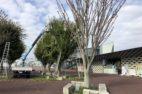 高根沢町:ちょっ蔵広場
