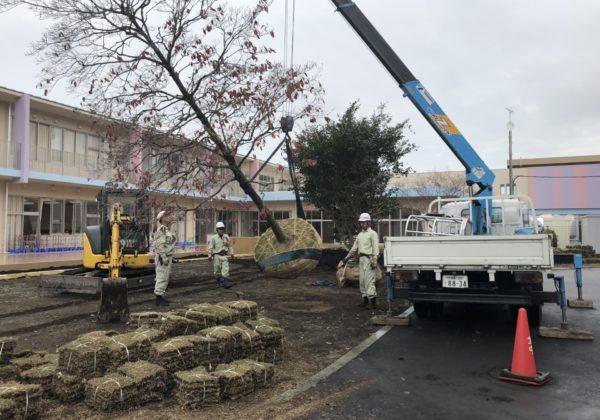 植栽工事:高根沢町立東小学校