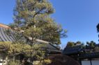 緑地管理:高根沢町W邸