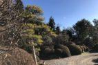 緑地管理:高根沢町S邸